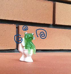 frog&toilet